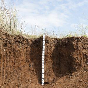 Lo spessore del suolo.