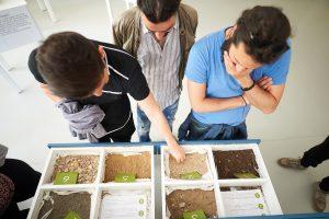 I diversi tipi di suolo.